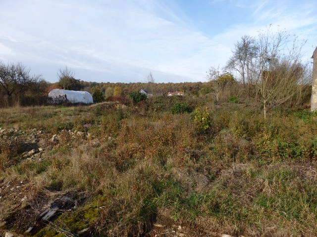 acheter terrain constructible 0 pièce 0 m² laumesfeld photo 2