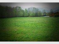Terrain constructible à vendre à Fraize - Réf. 5196637