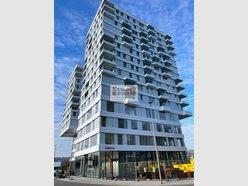Wohnung zur Miete 1 Zimmer in Belval - Ref. 7029357