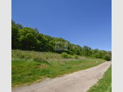 Building land for sale in Longuyon - Ref. 6760045