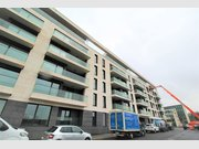 Apartment for rent 1 bedroom in Luxembourg-Cessange - Ref. 7104621