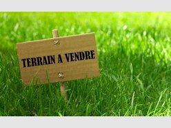 Terrain constructible à vendre à Baslieux - Réf. 6872429