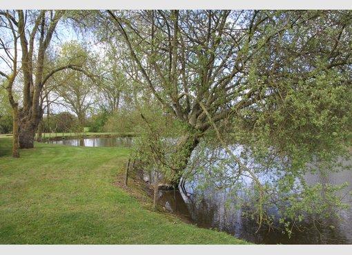 Terrain à vendre à Doué-la-Fontaine (FR) - Réf. 4991869