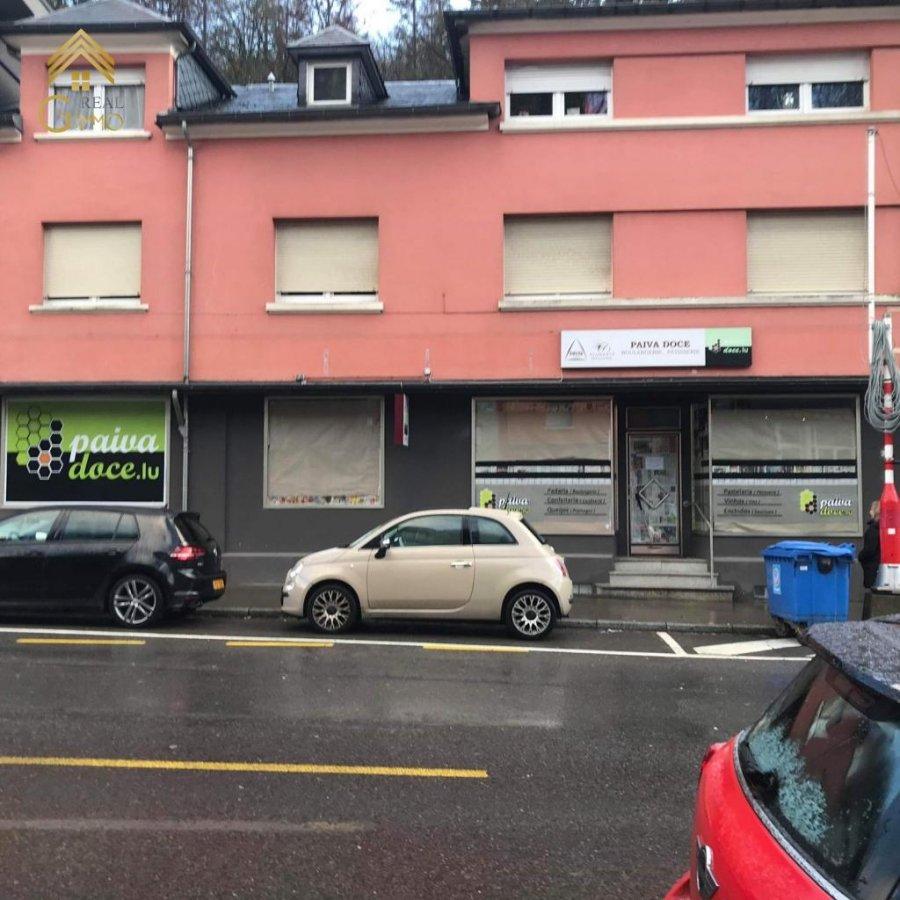 Triplex à louer 1 chambre à Luxembourg-Neudorf