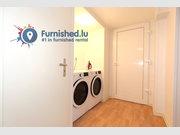 Chambre à louer 10 Chambres à Luxembourg-Centre ville - Réf. 6744717