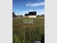 Terrain constructible à vendre à Rexpoëde - Réf. 6478989