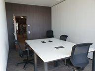 Bureau à louer à Leudelange - Réf. 6819997