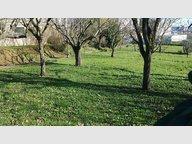 Terrain constructible à vendre à Vitry-sur-Orne - Réf. 6471837