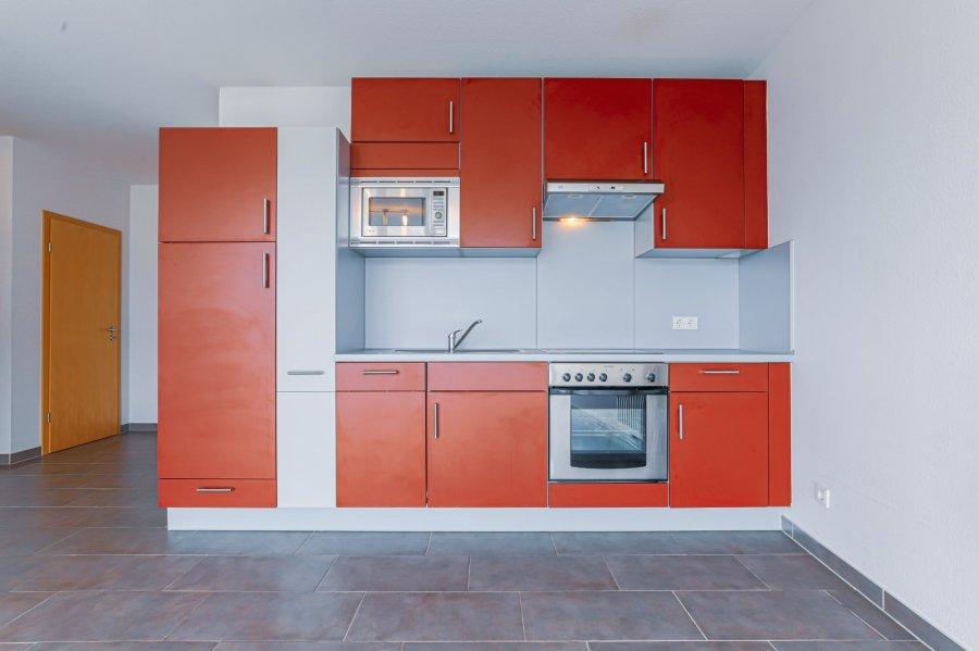 wohnung kaufen 1 schlafzimmer 59.5 m² echternach foto 7
