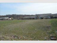 Terrain à vendre à Bennwihr - Réf. 5203629