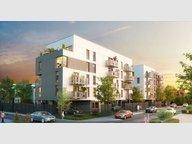 Appartement à louer 1 Chambre à Lille - Réf. 5011629