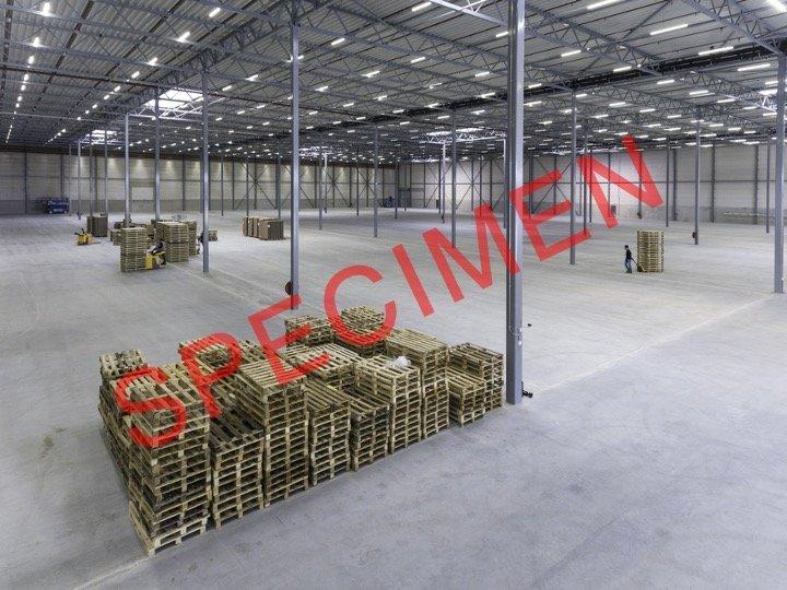 warehouse for rent 0 bedroom 680 m² aspelt photo 1