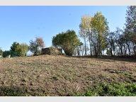 Terrain constructible à vendre à Grosrouvres - Réf. 6217133