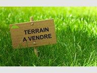 Terrain constructible à vendre à Montmédy - Réf. 5898685