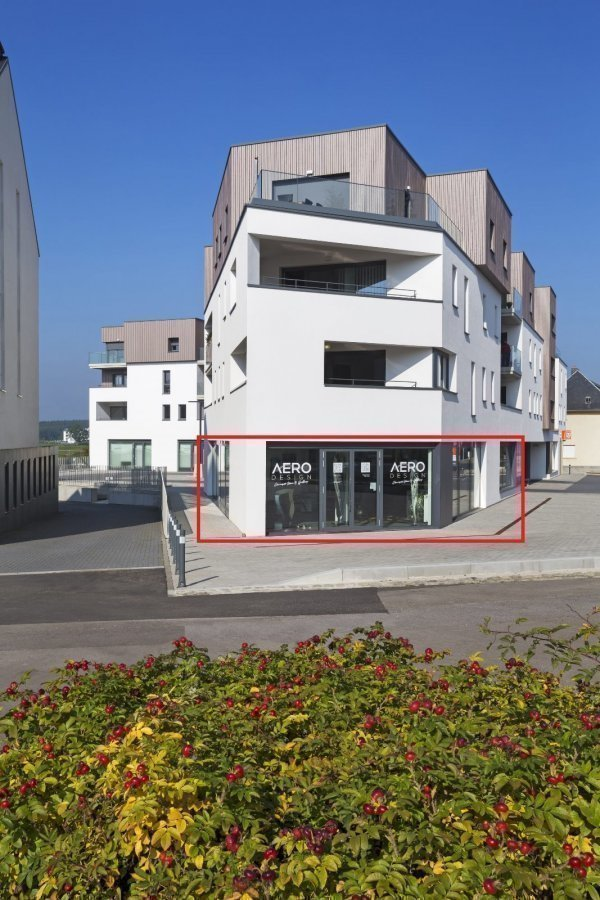 retail for rent 0 bedroom 290 m² weiswampach photo 2