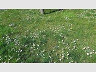 Terrain à vendre à Furdenheim - Réf. 5207741