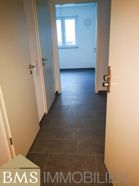 wohnung mieten 6 zimmer 70 m² bollendorf foto 3