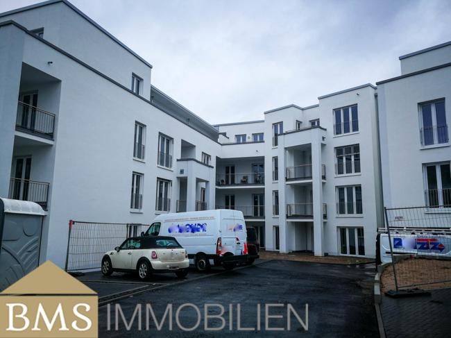 wohnung mieten 6 zimmer 70 m² bollendorf foto 1