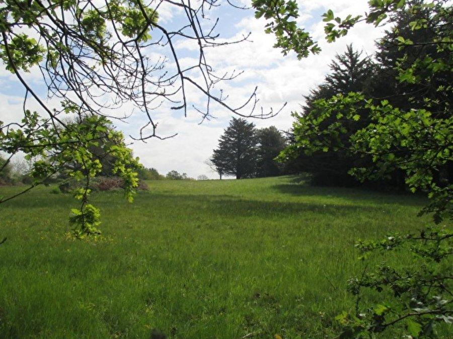 acheter terrain constructible 0 pièce 850 m² pontchâteau photo 3