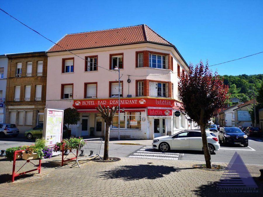 acheter immeuble de rapport 32 pièces 1350 m² longuyon photo 1