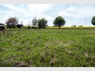 Terrain constructible à vendre à Kommen - Réf. 6007757