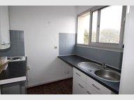 Appartement à louer F2 à Cambrai - Réf. 6025437