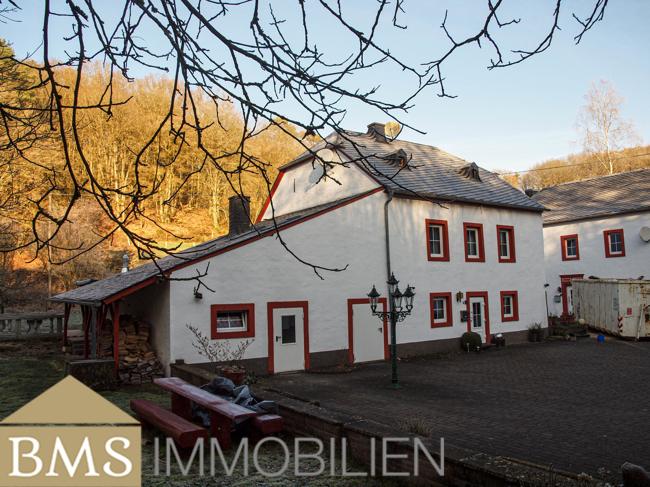 acheter chalet 46 pièces 644.29 m² heidweiler photo 4