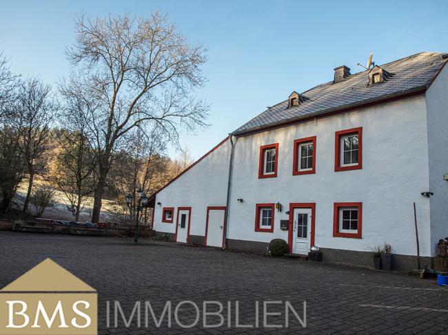 acheter chalet 46 pièces 644.29 m² heidweiler photo 6