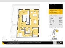 Apartment for sale 3 bedrooms in Berchem - Ref. 6923229