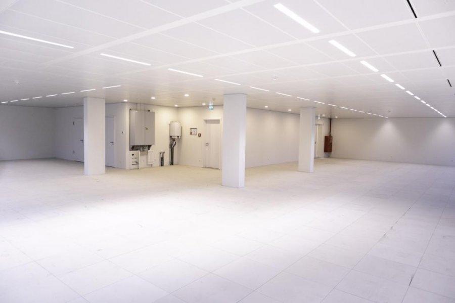 büro mieten 0 schlafzimmer 281.28 m² belval foto 5