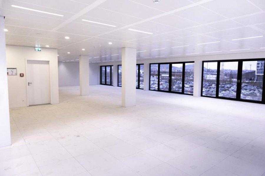 büro mieten 0 schlafzimmer 281.28 m² belval foto 1
