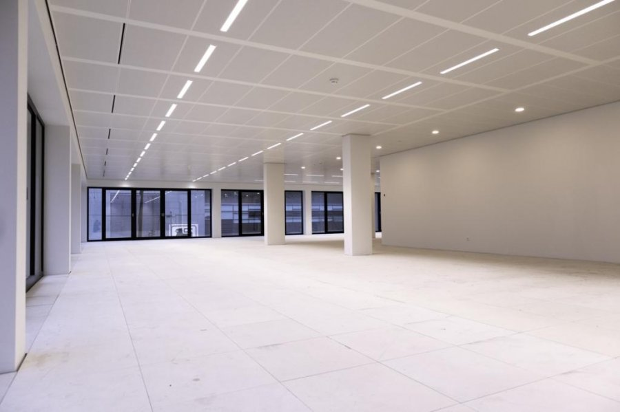 büro mieten 0 schlafzimmer 281.28 m² belval foto 2