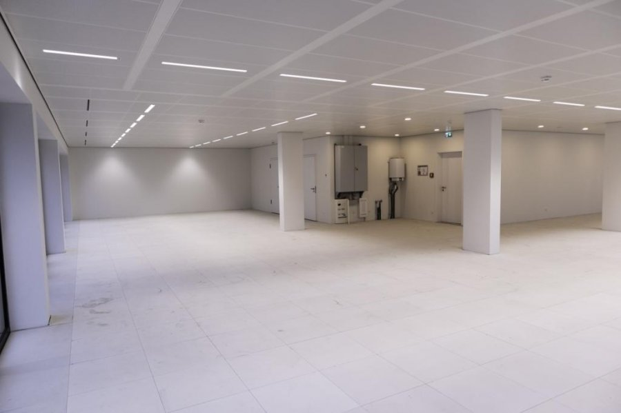 büro mieten 0 schlafzimmer 281.28 m² belval foto 3