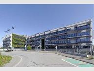 Bureau à louer à Windhof - Réf. 7338461