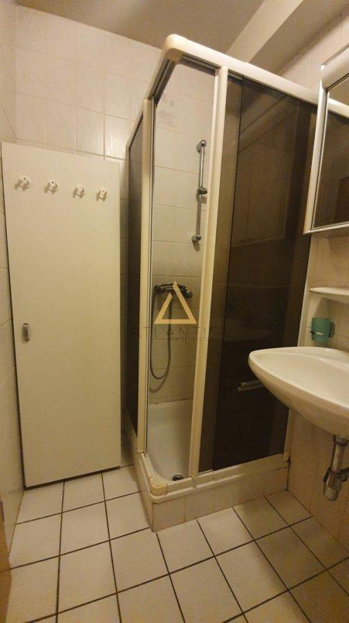 apartment mieten 0 schlafzimmer 36 m² lintgen foto 5