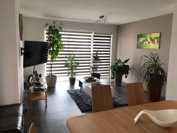 wohnung kaufen 2 zimmer 100 m² igel foto 1