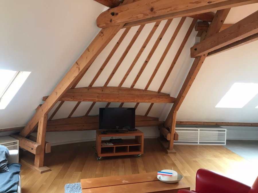 louer appartement 1 chambre 100 m² luxembourg photo 1