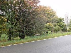 Building land for sale in Bastogne - Ref. 6562557
