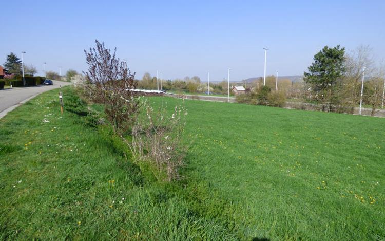 acheter terrain constructible 0 pièce 786 m² couvin photo 2