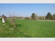 Bauland zum Kauf in Couvin - Ref. 6587389