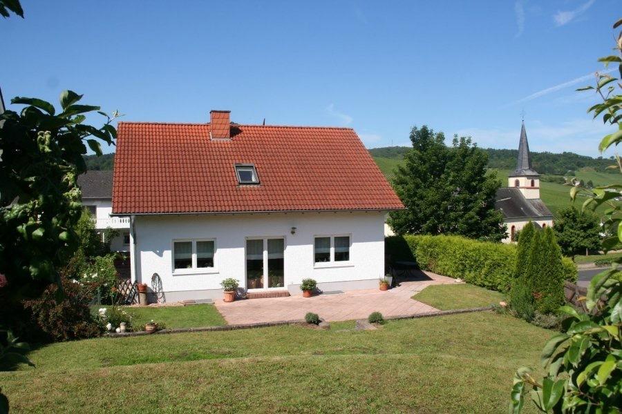 einfamilienhaus kaufen 9 zimmer 160 m² nittel foto 2