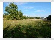 Terrain constructible à vendre à Nalbach - Réf. 6433277