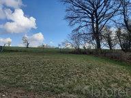 Terrain constructible à vendre à Épinal - Réf. 7163918