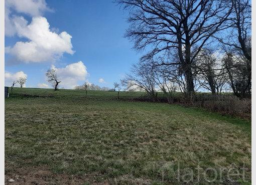 Terrain constructible à vendre à Épinal (FR) - Réf. 7163918