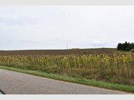Terrain constructible à vendre à Seicheprey - Réf. 6370846
