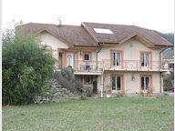 Maison individuelle à vendre F7 à Saint-Dié-des-Vosges - Réf. 6272302