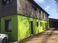 Appartement à louer F2 à Hesdigneul-lès-Béthune - Réf. 5147694
