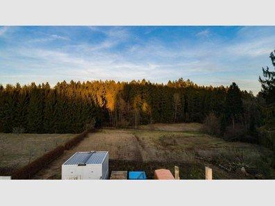 Appartement à vendre 1 Chambre à Weiswampach - Réf. 5743166