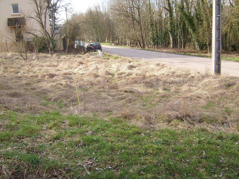 acheter terrain constructible 0 pièce 0 m² nancy photo 3