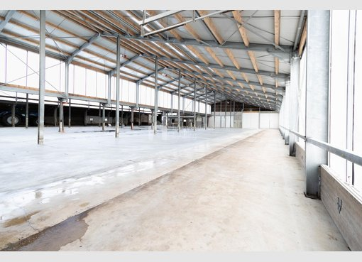 Lagerfläche zur Miete in Leidenborn (DE) - Ref. 7025998